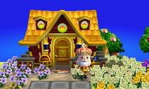 gold-house.jpeg