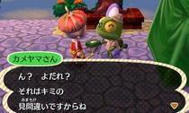 kameyama-3.jpeg