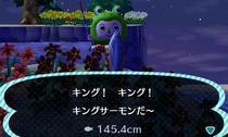 king-sake.jpg