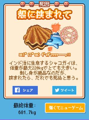 shako.jpg