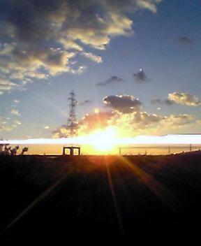 image/yuzuriha-2005-10-23T06:18:31-1.jpg